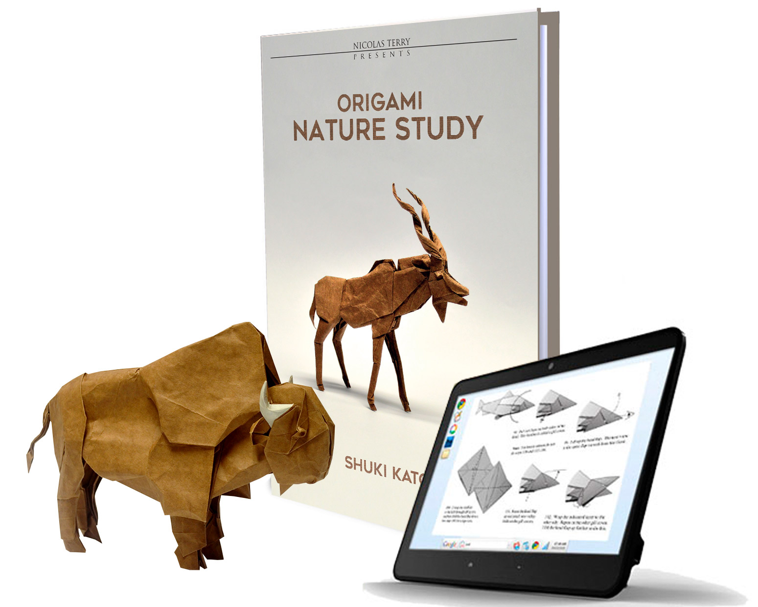 9 Origami Nature Study By Shuki Kato E Book