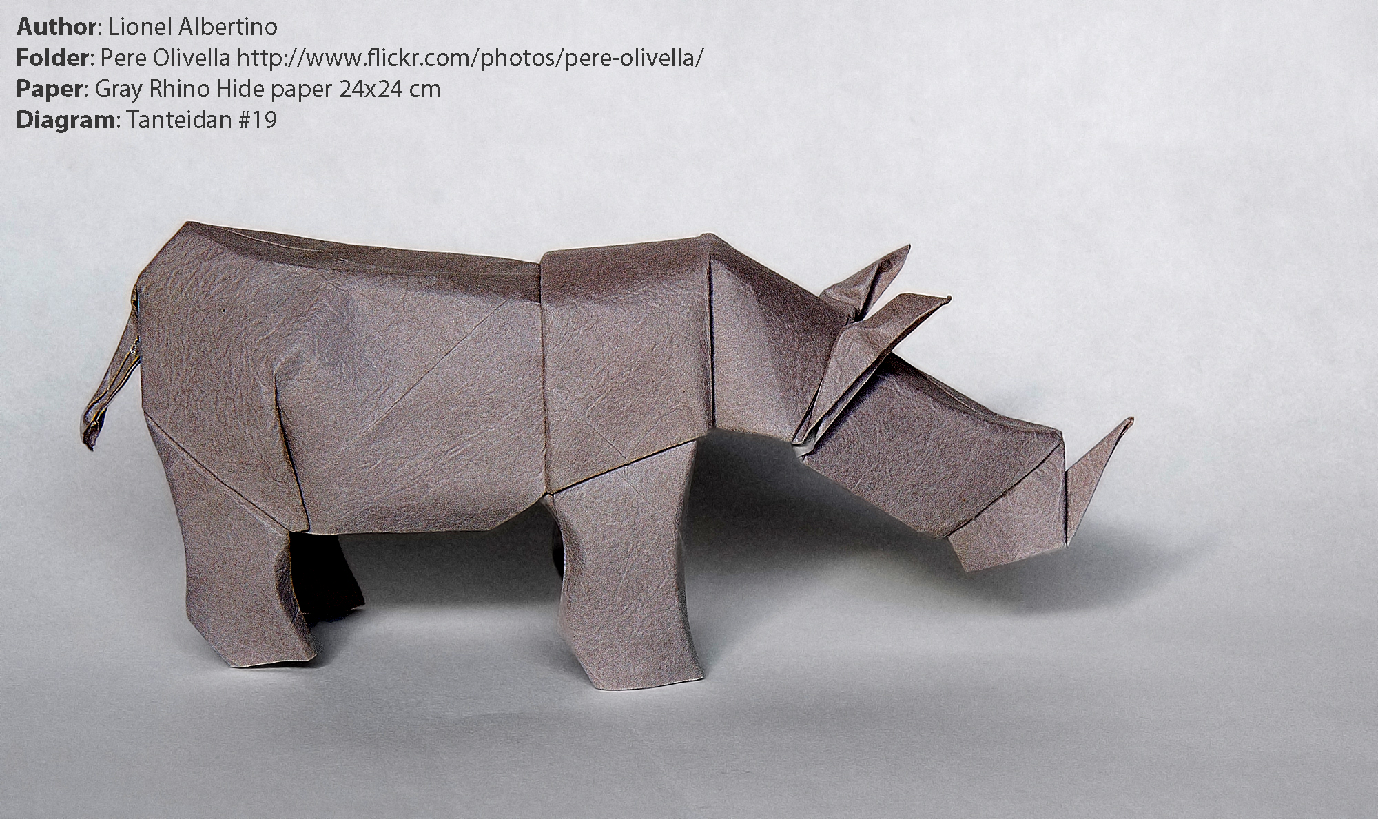 1410777040albertino-rhino-by-pere-olivella-with-rhino-hide-paper