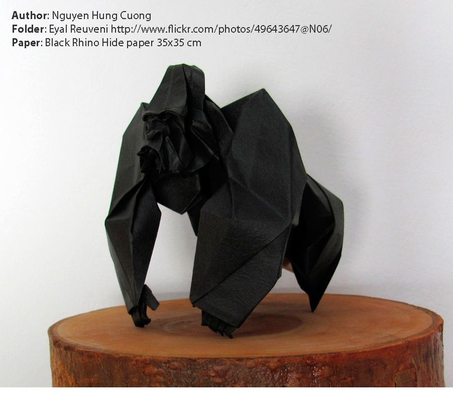 1410777049black-rhino-hide-paper-with-gorilla